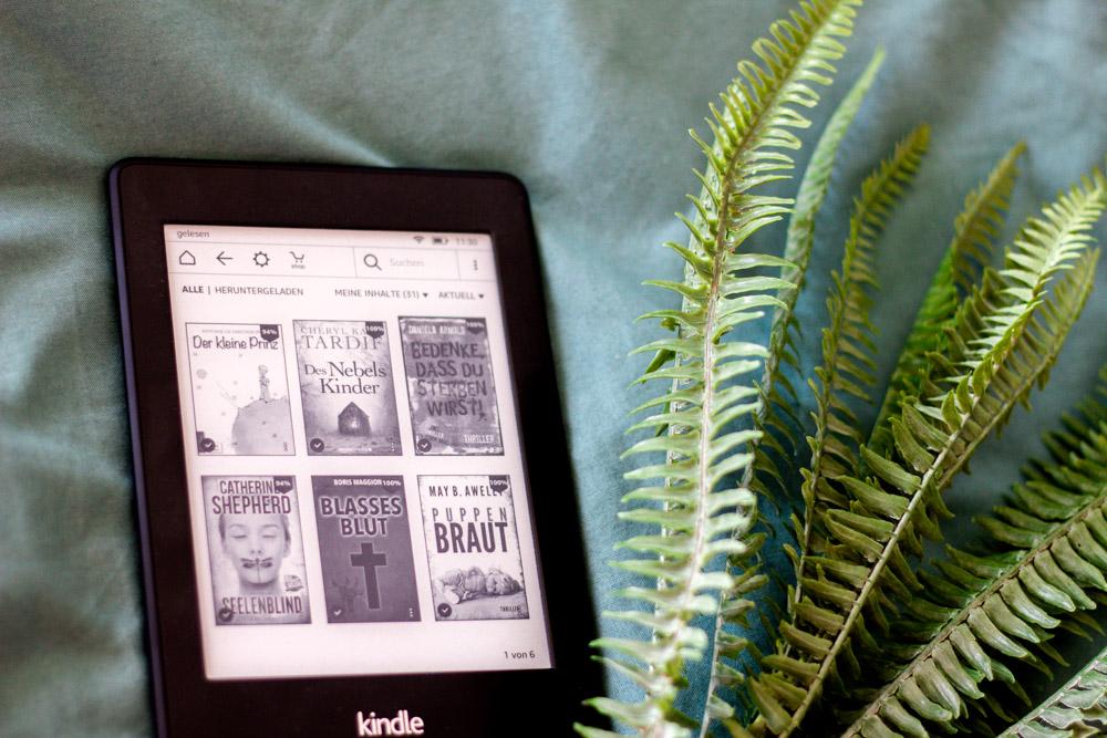 Kindle EBook 1