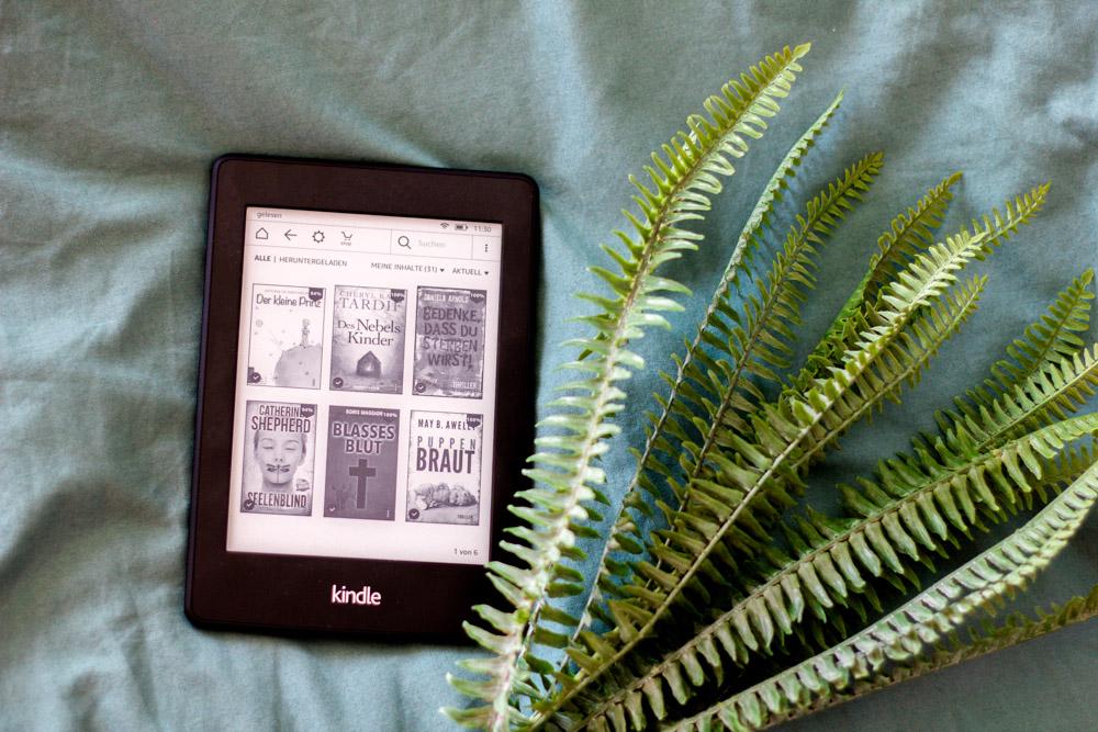 Kindle EBook 2