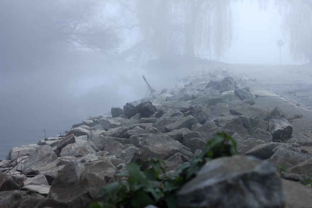 nebel-eggenstein-11