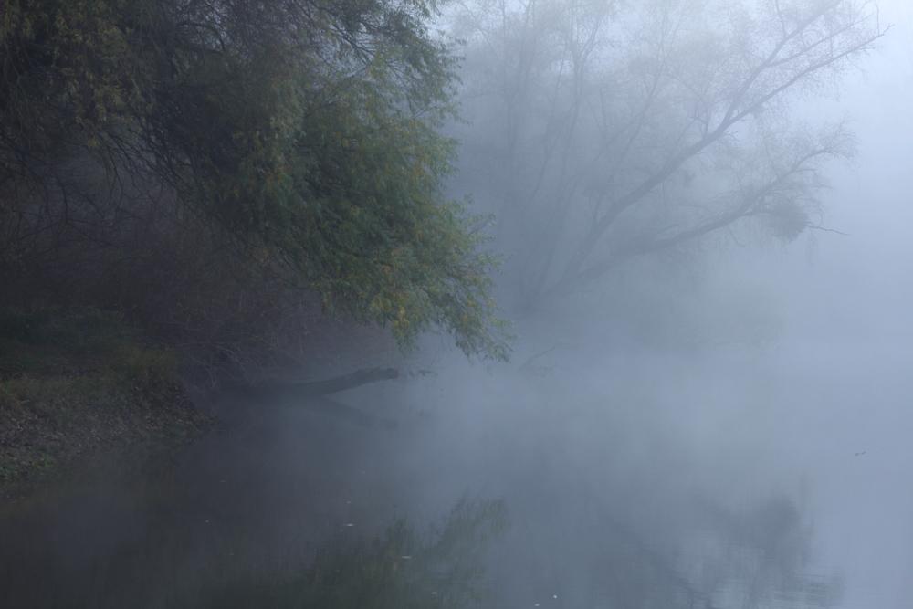 nebel-eggenstein-8
